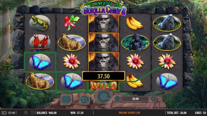 stacked wild triggeres multiple winning combinations by No Deposit Casino Guide