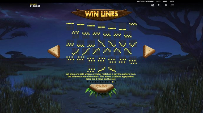 No Deposit Casino Guide image of Wild Cats Multiline