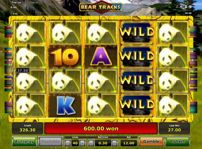 Bear Tracks screenshot