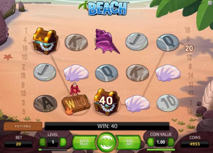 here is an example of a typical win with the regular wild symbol - No Deposit Casino Guide