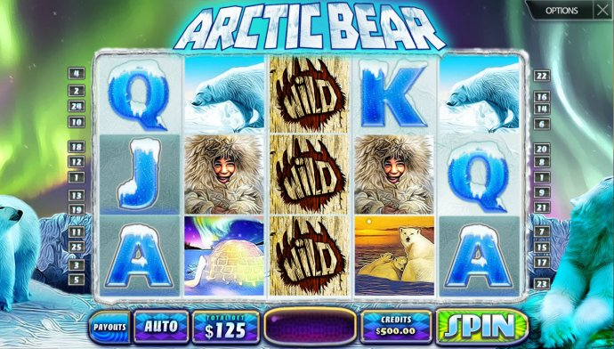 Arctic Bear by No Deposit Casino Guide