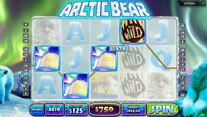 Images of Arctic Bear