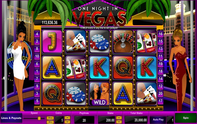 One Night in Vegas by No Deposit Casino Guide