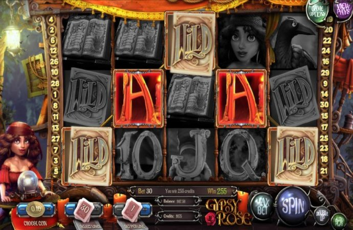 No Deposit Casino Guide image of Gypsy Rose
