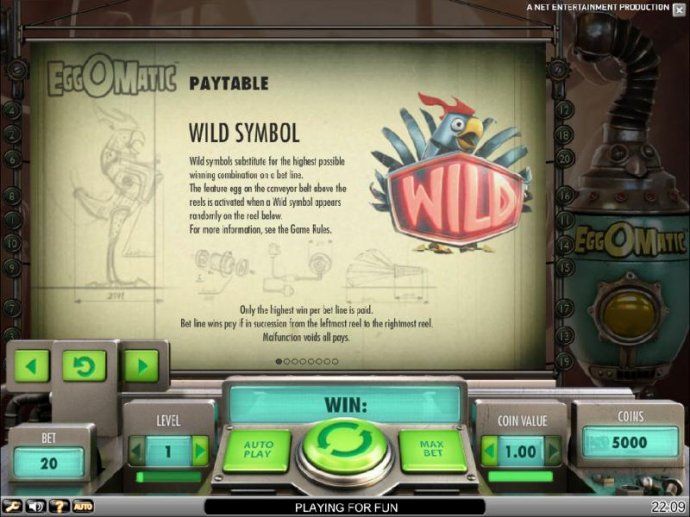 wild symbol game rules - No Deposit Casino Guide