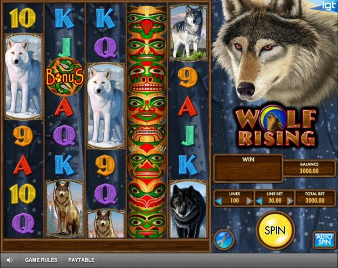 No Deposit Casino Guide - main game board featuring five reels and 100 paylines