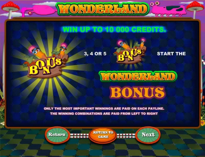 bonus feature rules by No Deposit Casino Guide
