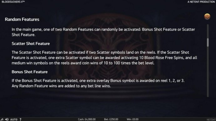 Random Feature Rules - No Deposit Casino Guide