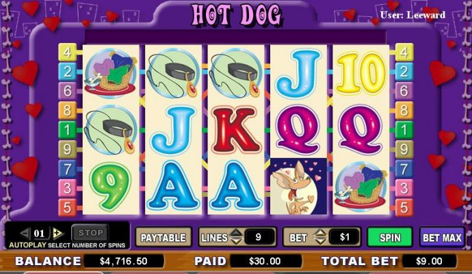 No Deposit Casino Guide image of Hot Dog