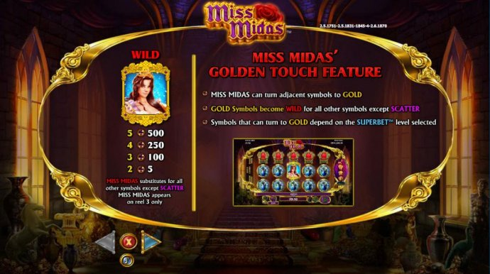 Wild symbol paytable - No Deposit Casino Guide