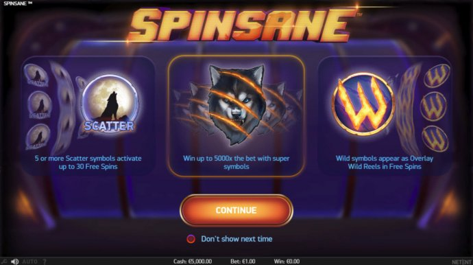 Spinsane screenshot