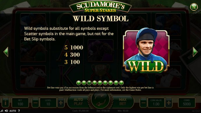 Wild Symbols Rules and Pays by No Deposit Casino Guide