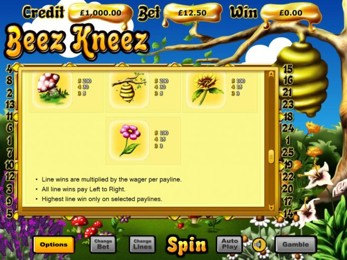 Beez Kneez by No Deposit Casino Guide