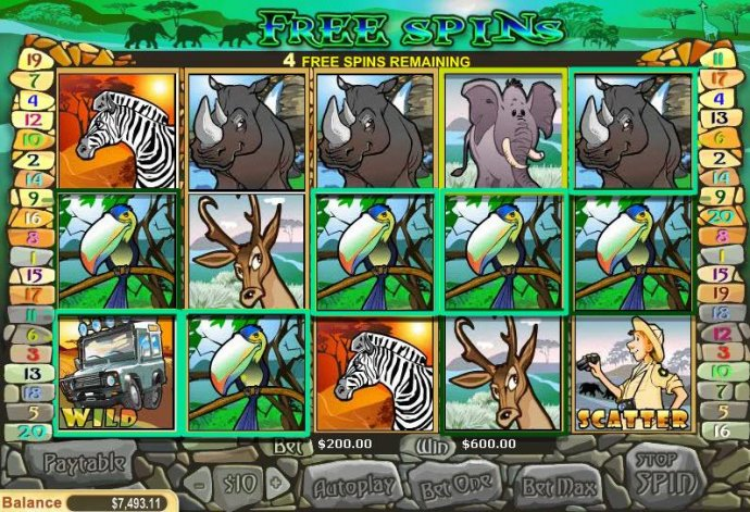 Images of Safari