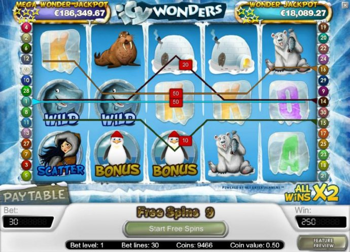 Images of Icy Wonders