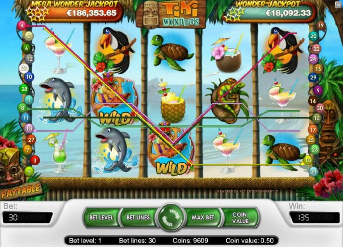 No Deposit Casino Guide - 135 coin big win triggered by a couple of wild symbols