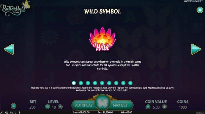 Wild Symbols Rules - No Deposit Casino Guide