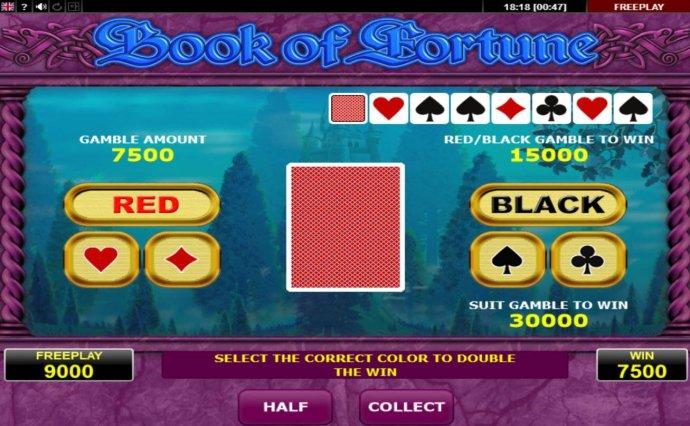 Book of Fortune screenshot