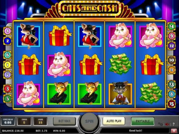 No Deposit Casino Guide image of Cats and Cash