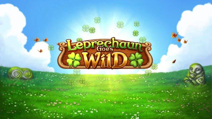 Leprechaun Goes Wild screenshot