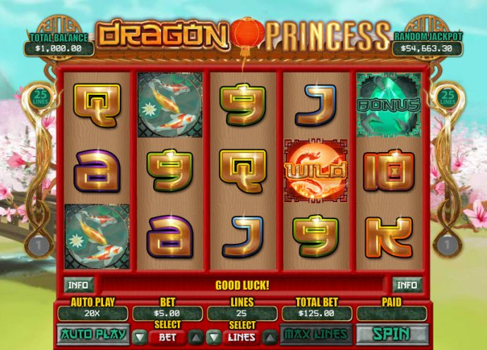 Dragon Princess screenshot