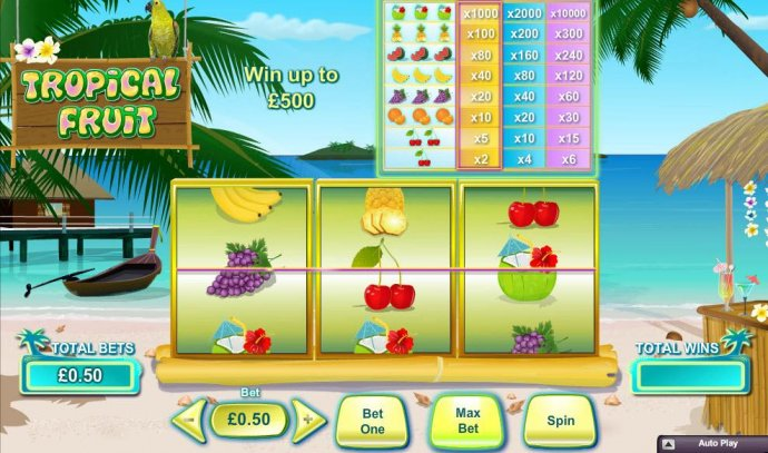 Tropical Fruit by No Deposit Casino Guide