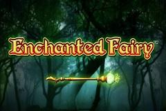 Enchanted Fairy