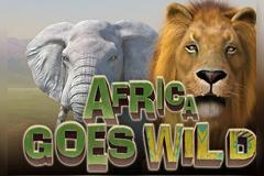 Africa Goes Wild